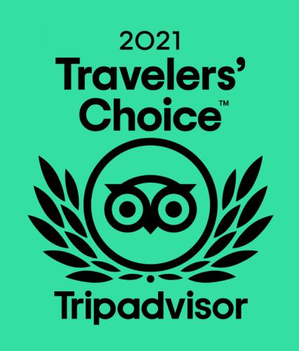 2021 Traveller's Choice Award from Tripadvisor with the tripadvisor owl logo on a green background